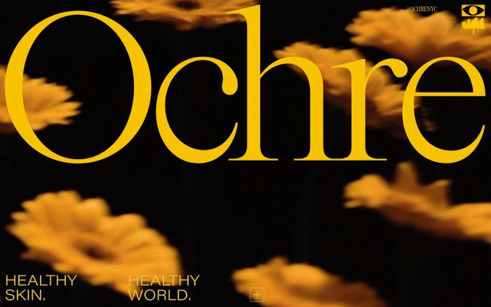 Screenshot of Ochre NYC website