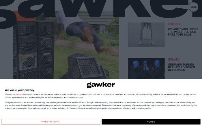 Screenshot of Gawker website