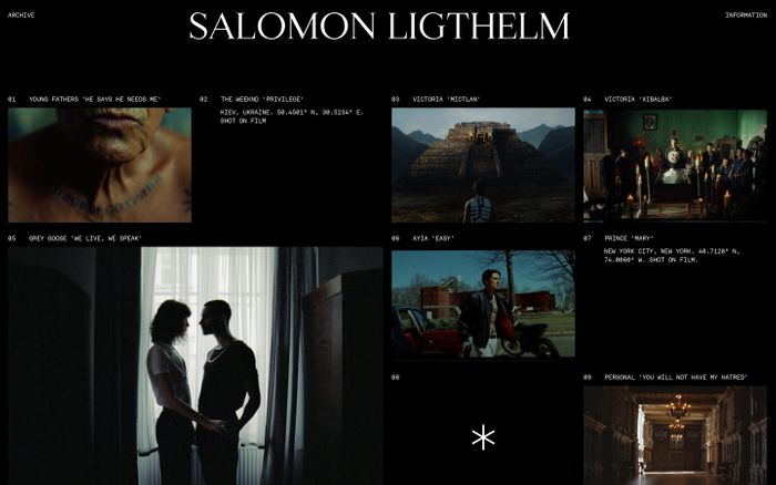 Screenshot of Salomon Ligthelm website