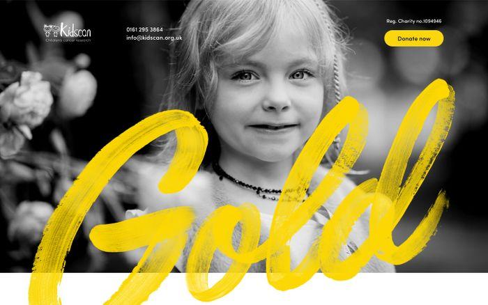 Screenshot of Kidscan website