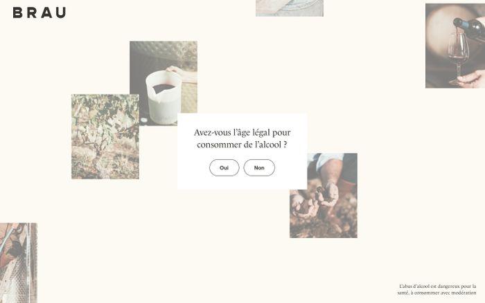 Screenshot of Domaine de Brau website