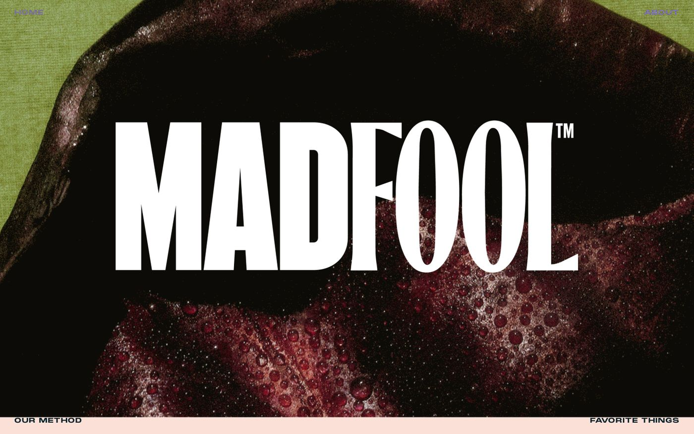 Screenshot of Mad Fool consulting website