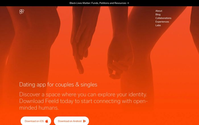 Screenshot of Feeld website