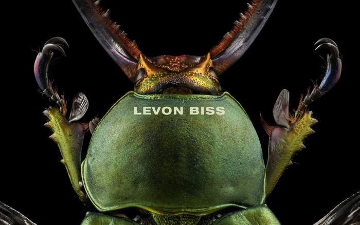 Screenshot of LEVON BISS website