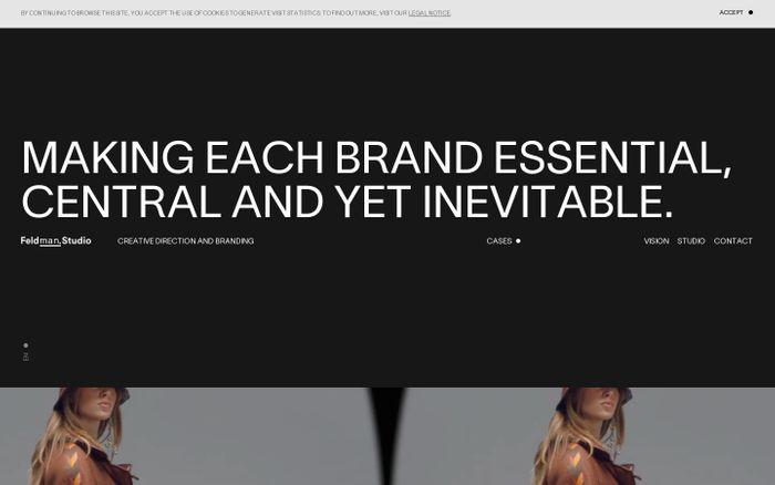 Screenshot of Feldman.Studio website