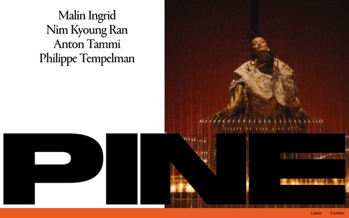 Screenshot of Pine website
