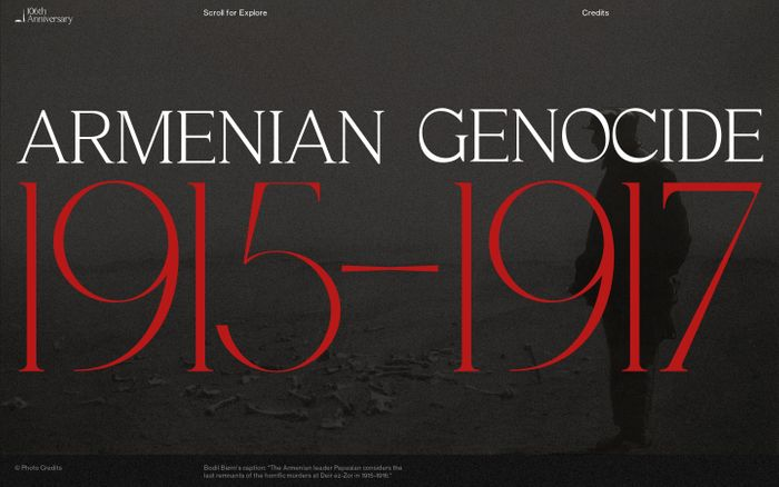 Screenshot of The Armenian Genocide website