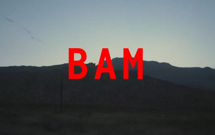Screenshot of BAM | Home