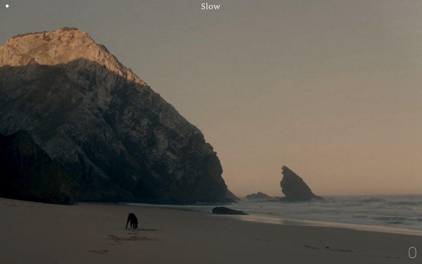 Screenshot of Slow website