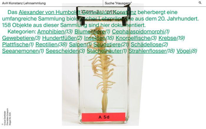 Screenshot of AvH Konstanz Lehrsammlung