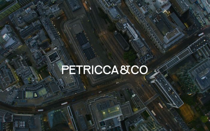 Screenshot of Petricca&Co - Independent global asset management firm