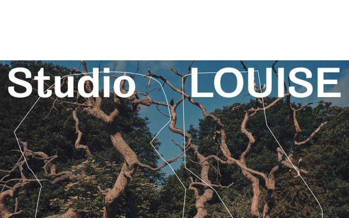 Screenshot of Studio Louise