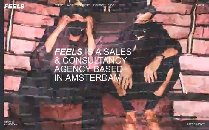 Screenshot of Feels agency website