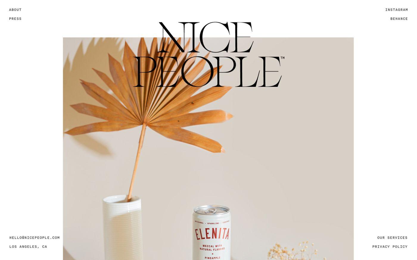Screenshot of Nice People website