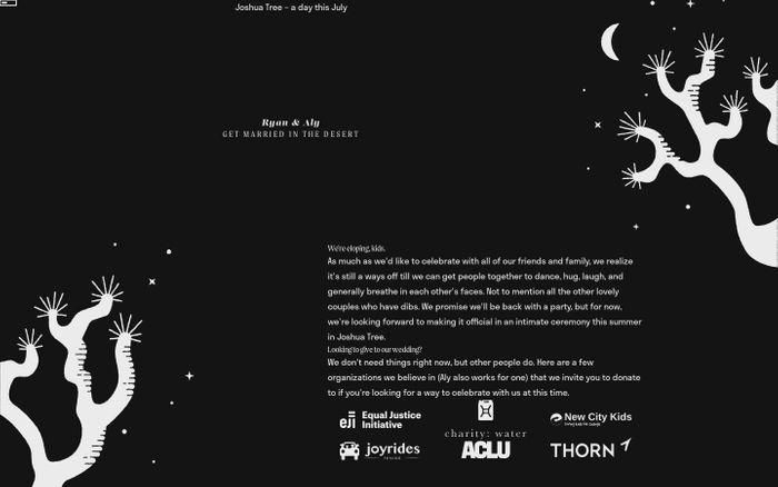 Screenshot of Ryan & Aly website