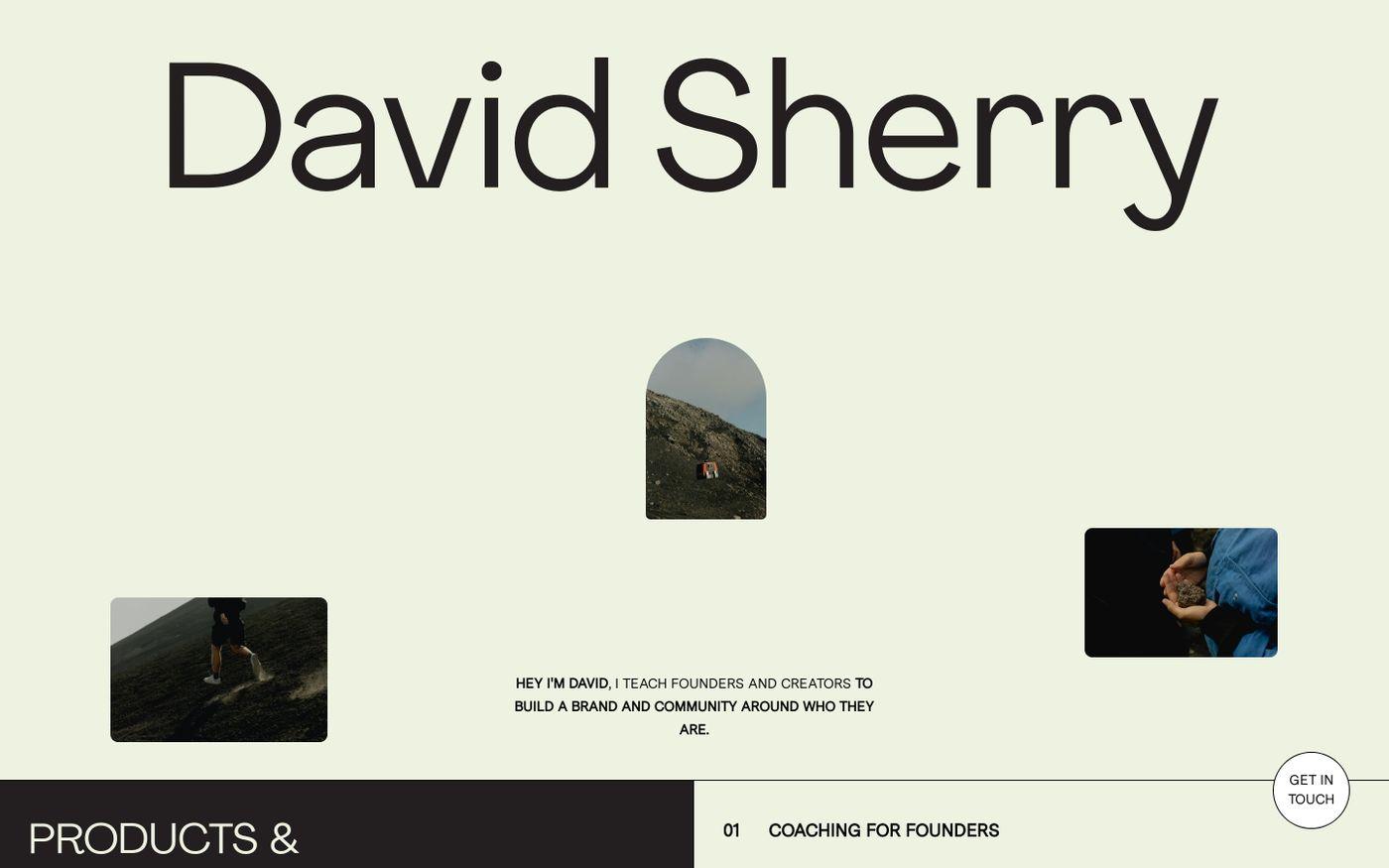 Screenshot of David Sherry website