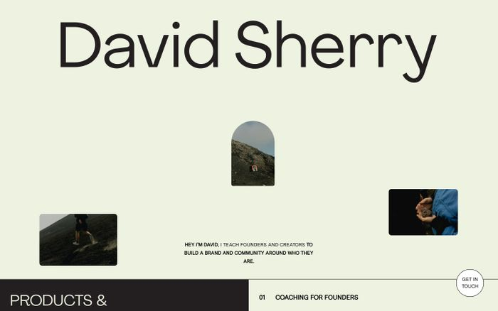 Screenshot of David Sherry website