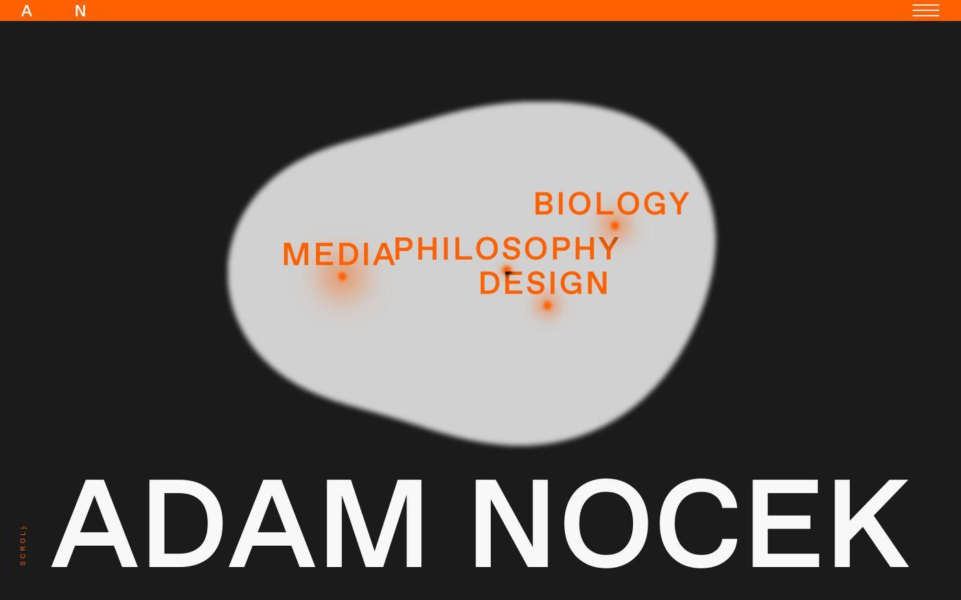 Screenshot of Adam Nocek website
