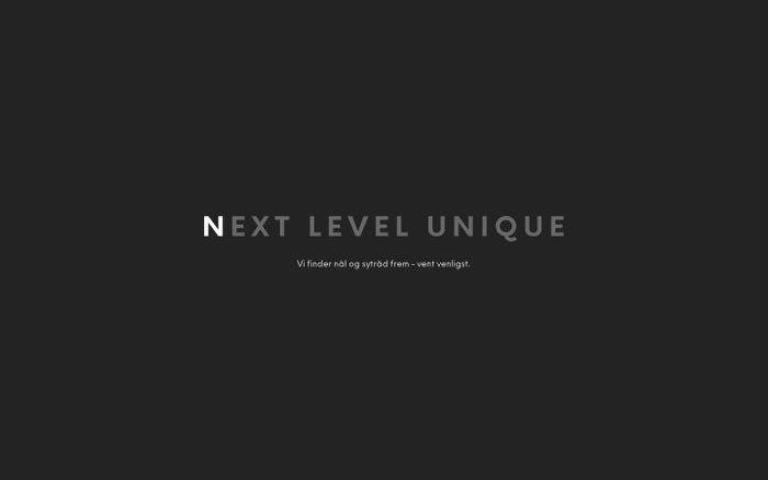 Screenshot of Design studio | Nex Level Unique