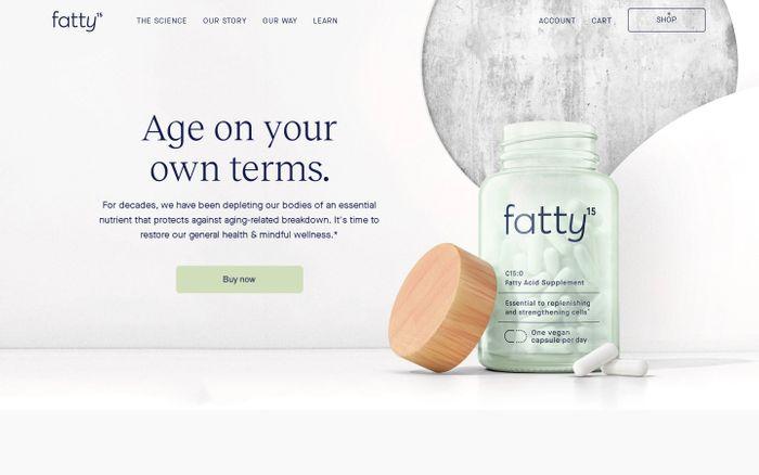 Screenshot of Fatty15 website