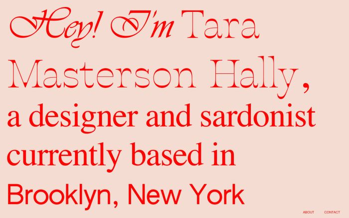 Screenshot of Tara Masterson Hally website
