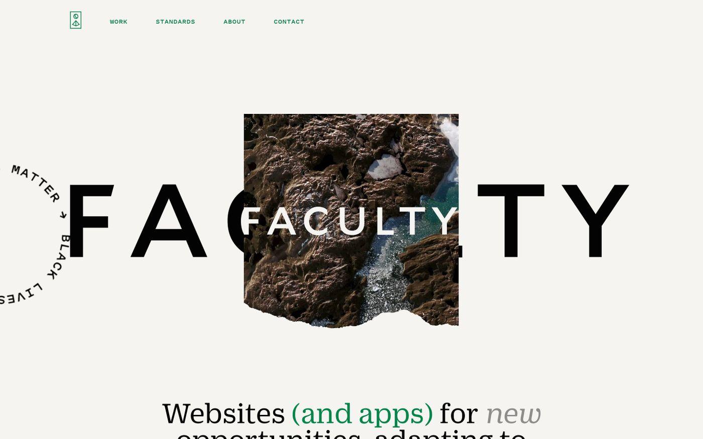 Screenshot of Faculty website