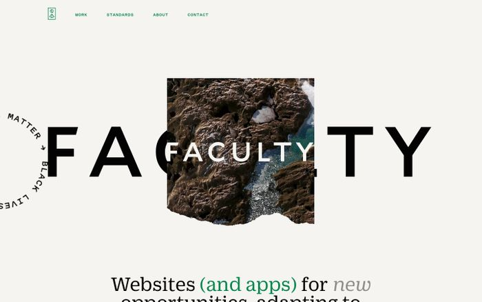 Screenshot of Faculty website