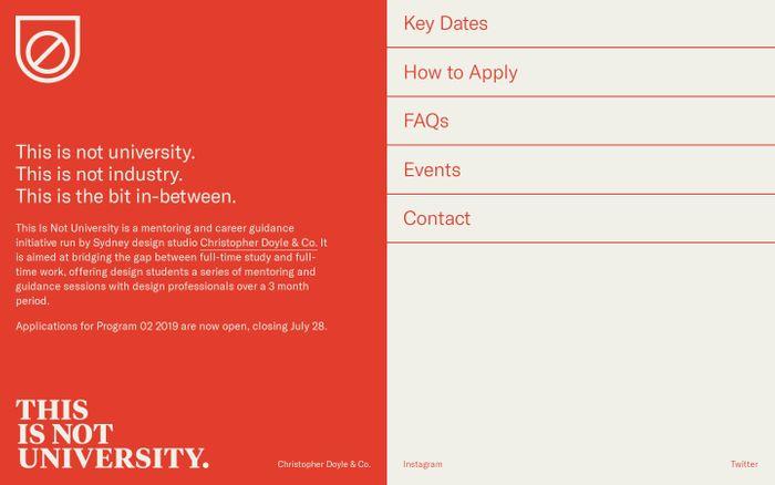 Screenshot of This Is Not University website