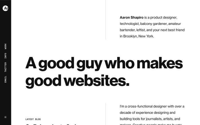 Screenshot of Aaron Shapiro website