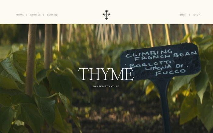 Screenshot of Thyme website