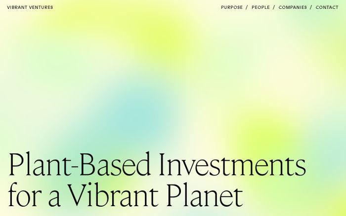Screenshot of Vibrant ventures website