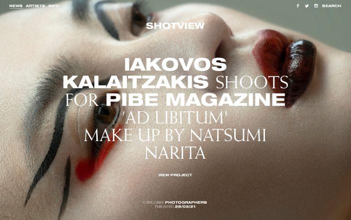 Screenshot of Shotview website