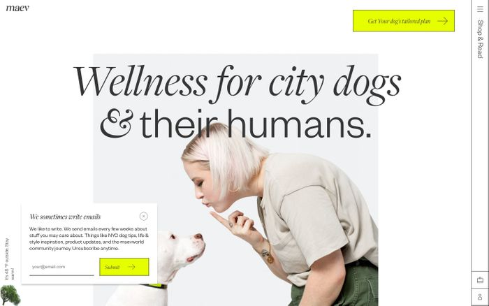 Screenshot of Meet Maev - Wellness for City Dogs & Their Humans