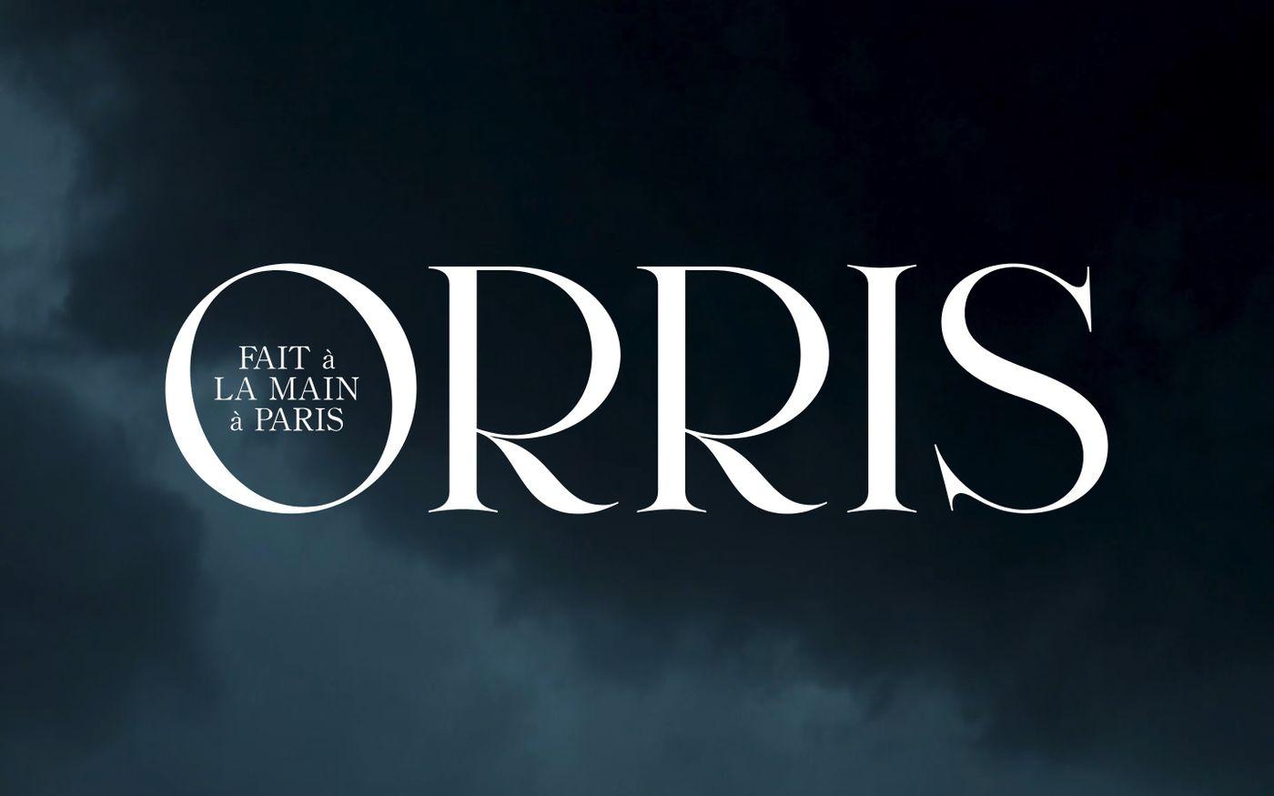 Screenshot of Orris website