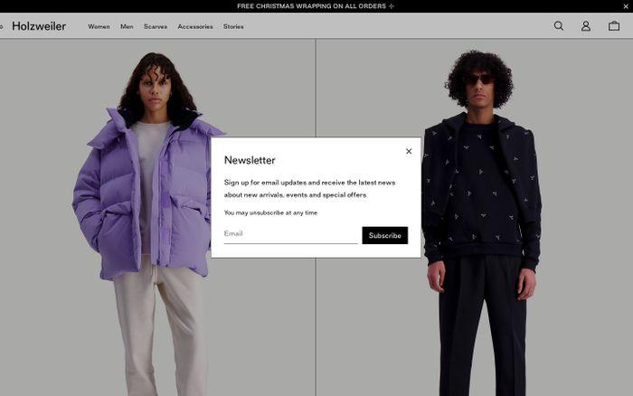 Screenshot of Holzweiler - Official Online Store