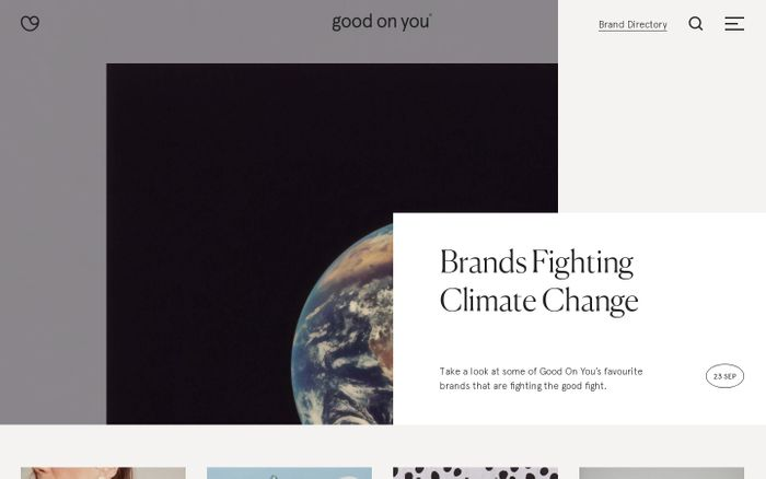 Screenshot of Good On You website