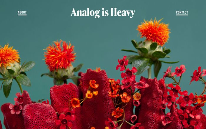 Screenshot of Analog is Heavy, a NYC-based creative studio with a focus on photography