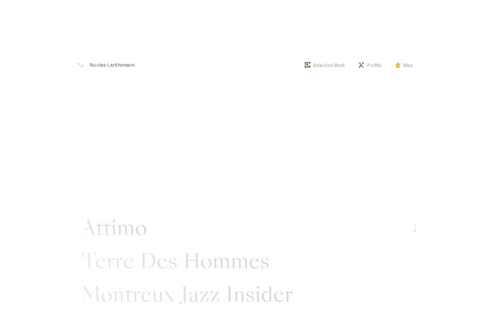 Screenshot of Nicolas Lanthemann website