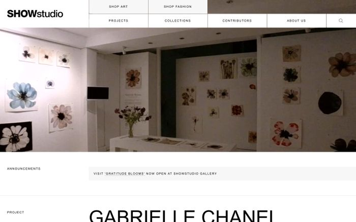 Screenshot of SHOWstudio website
