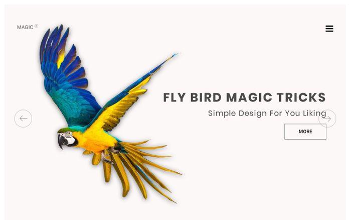 Screenshot of flybird