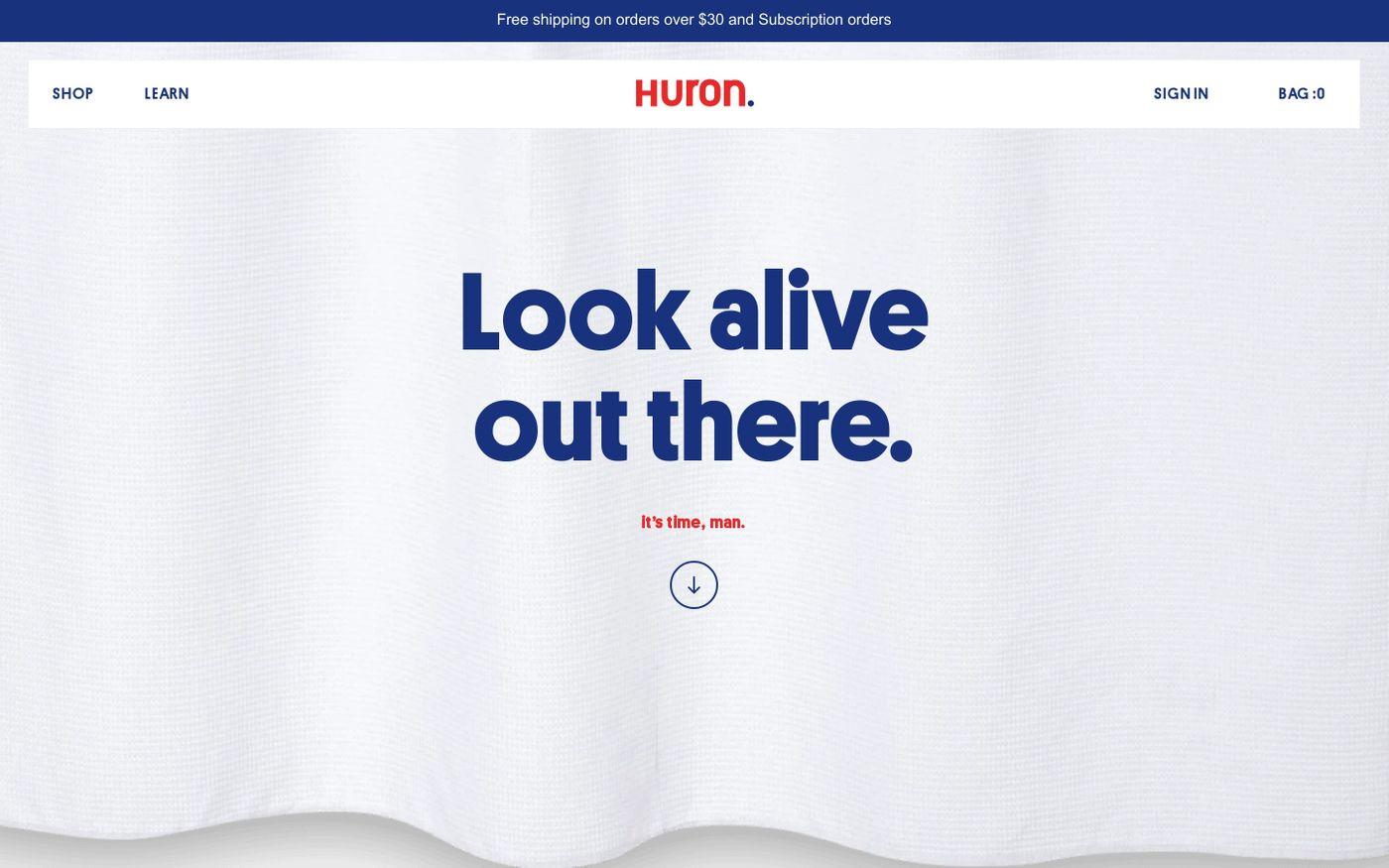 Screenshot of Huron website