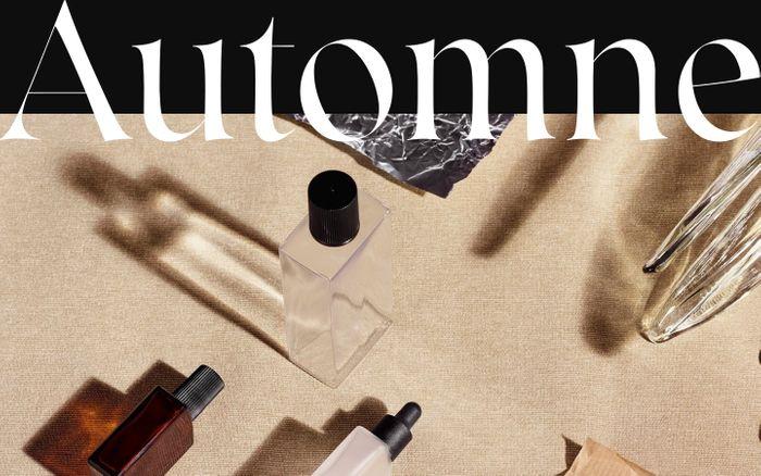 Screenshot of Automne - full-service creative studio