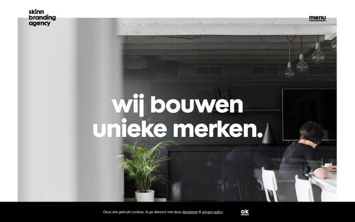 Screenshot of skinn branding agency