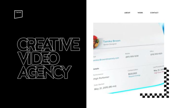 Screenshot of  Tane - Creative Video Agency