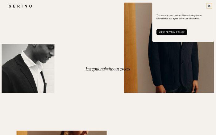 Screenshot of Serino website