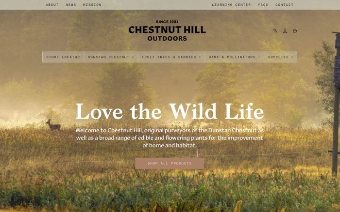 Screenshot of Chestnut Hill Outdoors – Since 1981