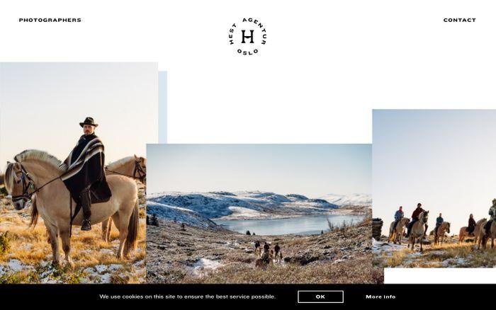 Screenshot of Hest Agentur Oslo