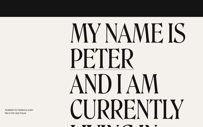Screenshot of Peter Demulsant website
