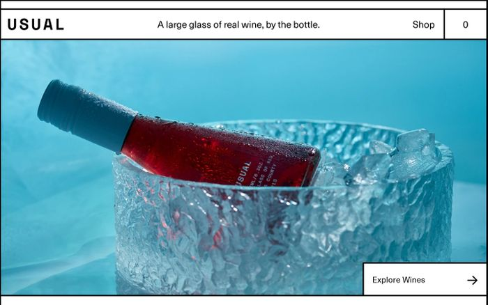 Screenshot of Usual wines website