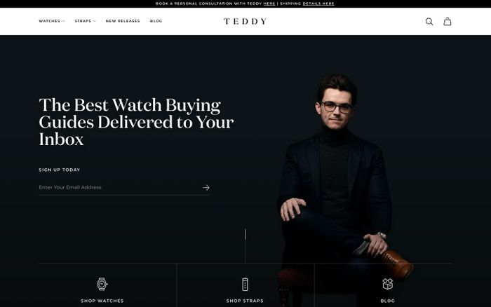 Screenshot of Teddy Baldassarre website